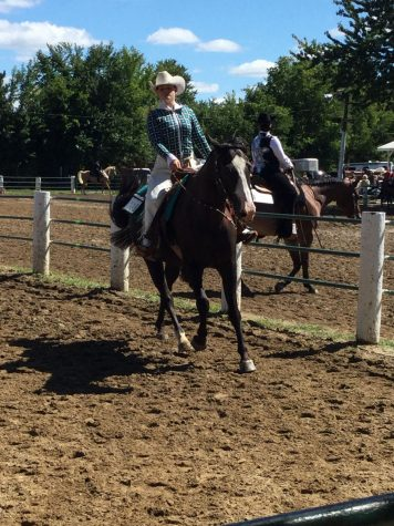 Equestrian team events, looking for members