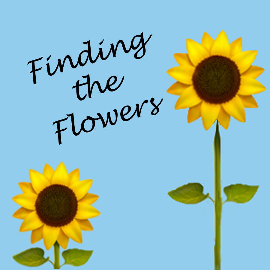 Finding the flowers: Gaining maturity by learning from parents