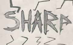 Sharp by Gabe Huff
